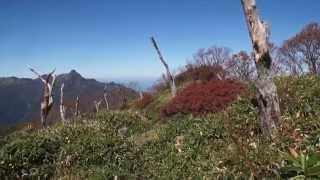 手箱山、筒上山、岩黒山の紅葉