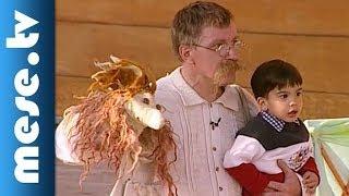 Márkus Színház: Laci királyfi 3. rész (színház gyerekeknek) | MESE TV
