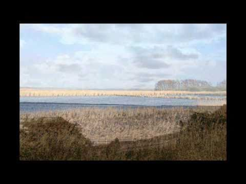 Kuling fra nordvest Bornholms stemme.wmv