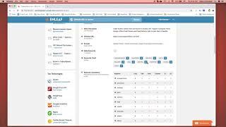 Free Website Grader   Mini SEO Audit   Enleaf