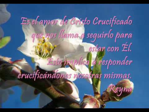Video Con Frases De Vocacionwmv Youtube