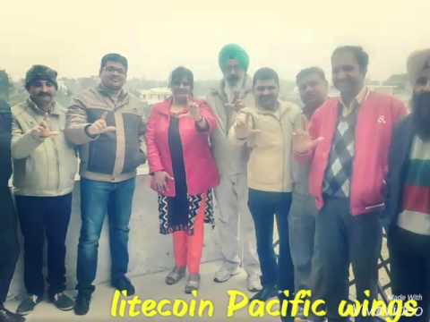 Lite coin pacific wings ltd