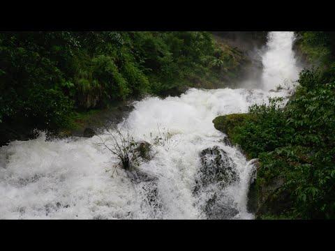 Iruppu Falls on Wikinow | News, Videos & Facts