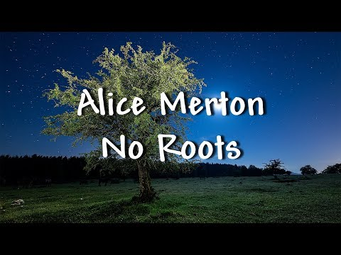 Mix - Alice Merton - No Roots - Lyrics