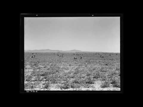 Molokan American Folk Music (CA): Paralppamenoh 29-10