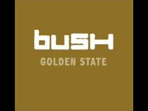Bush - Hurricane