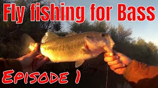 Fly fishing for bass 2018 (TOP WATER POPPERS) Episode 1