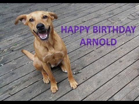Arnold's 2nd Birthday