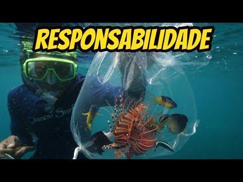 Empresas e atitudes que buscam o melhor para o Aquarismo Marinho
