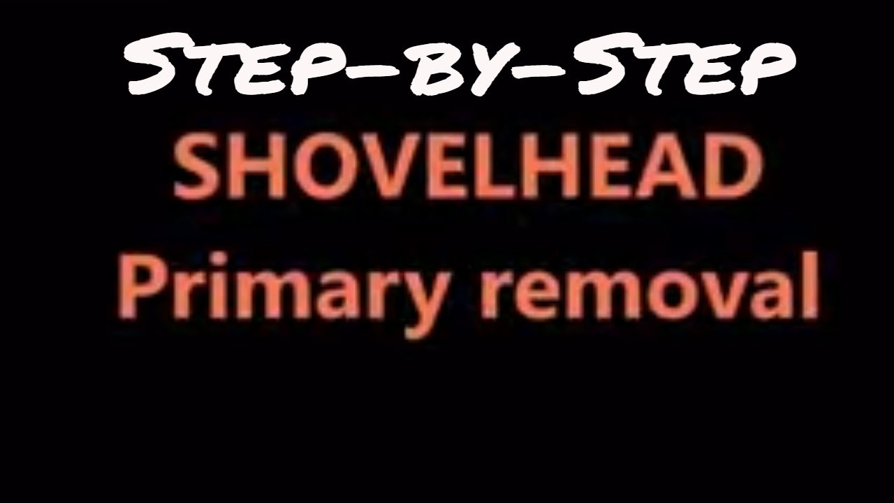Shovelhead Primary Complete Tear Down 66 E84 4 Speeds With Chain 1978 Fxe Wiring Diagram