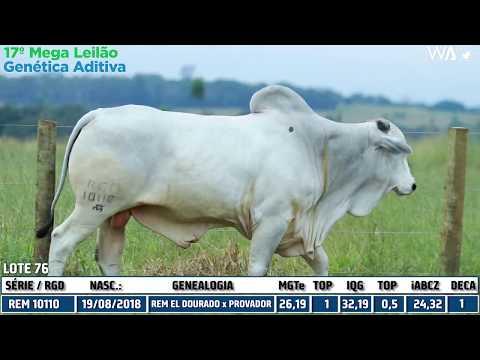 LOTE 76 - REM 10110 - 17º Mega Leilão Genética Aditiva 2020