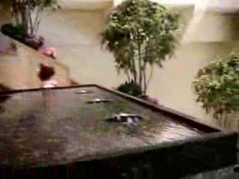 escalator fountains inside water tower mall chicago youtube. Black Bedroom Furniture Sets. Home Design Ideas