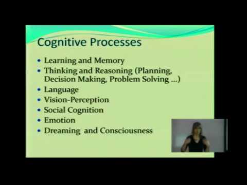 Cognition and Cognitive Processes CP