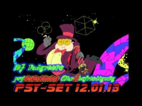 pSystematische Ohralbefriedigung - 3h live-PSY-SET 12.01.13 - DJ Padgroove