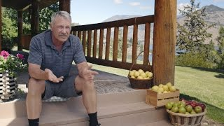 Core Values: An American Apple Grower Sells to China