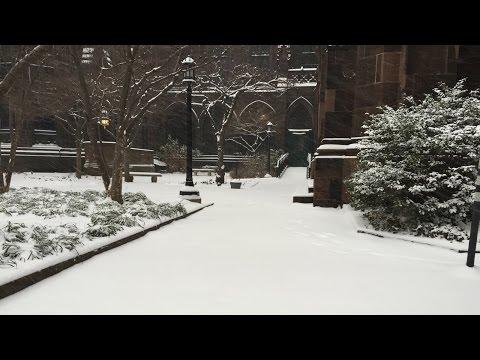 Happy Holidays 2015, Washington Square Park, New York City