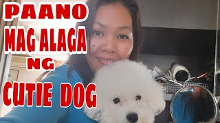 HOW TO TAKE CARE THE DOG DAILY#OFW LIFE IN HK#MARETIS DUAZO