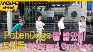 나하은(Na Haeun) -포텐독 (PotenDogs )- 똥 밟았네(Stepped On Poop)-댄스 커버 Dance Cover