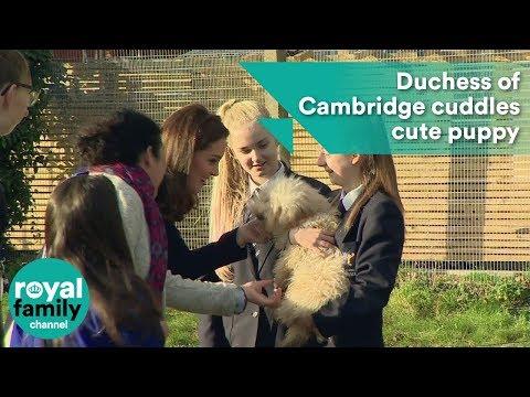 Duchess of Cambridge cuddles cute puppy on visit to school