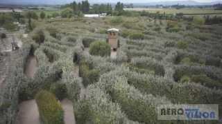 Labyrinthe Géant à la Roque d'Anthéron