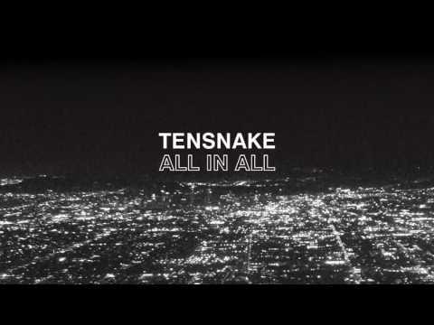 Tensnake - All In All