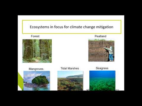 Challenges And Successes Of Incorporating Coastal Wetlands In The US GHG Emissions And Sinks