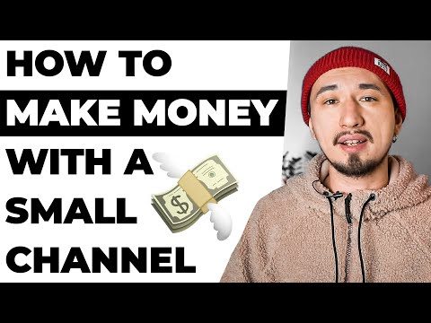 5 Ways to Make Money on on a Small Youtube Channel / How to make money ONLINE?