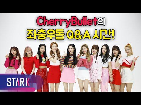 (ENG SUB) A charming Q&A time with Cherry Bullet! (체리체리한 체리블렛의 상큼발랄한 Q&A 타임!)