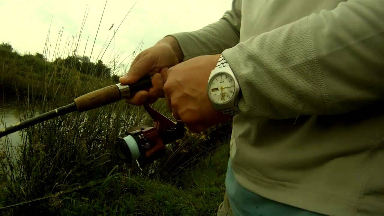 Pesca Tararira - Rio Tala - Uruguay