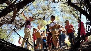 Kid Scientists at Mesquite Wildlife Oasis