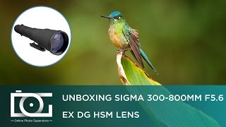 REVIEW | SIGMA 300-800mm F/5.6 EX DG HSM Telephoto Lens NIKON DSLR Cameras