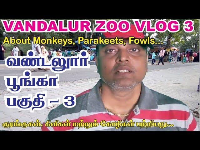 Vandalur zoo vlog in tamil - 3 | Arignar anna zoological park chennai