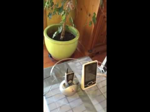 & Oxygen cage for pet - YouTube