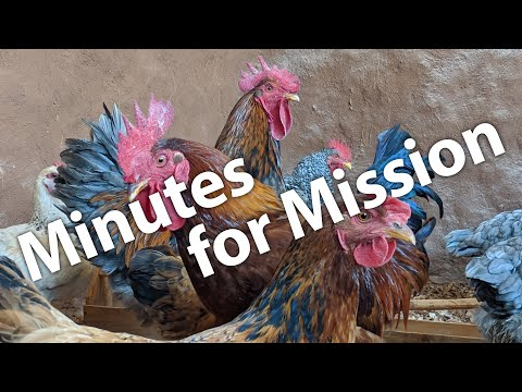 Minutes for Mission