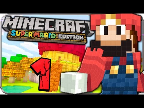 Let's Play MINECRAFT: SUPER MARIO EDITION Part 1: Willkommen in der Mario World!
