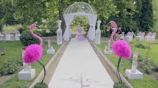 видео В Зазеркалье, или  Свадьба в стиле Алиса в стране чудес