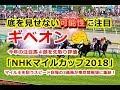 NHKマイルカップ2018 スピード自慢の3歳馬が東京競馬場に集結!
