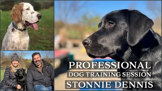Professional Dog Training Session With Stonnie Dennis