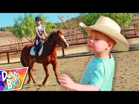 Cowboy Ollie Goes Horse Shopping!