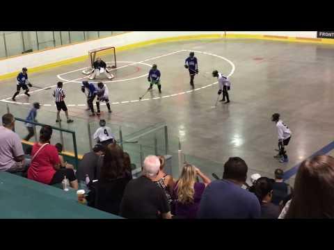 Ball Hockey Provincials