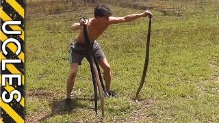 Catching Wild Rabbits using Snakes: BAREHANDED Rabbit Catch thumbnail