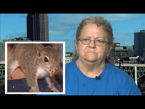 Michael J. - Woman Causes 2 HOUR Flight Delay & Deplaning due to Her Support Squirrel!