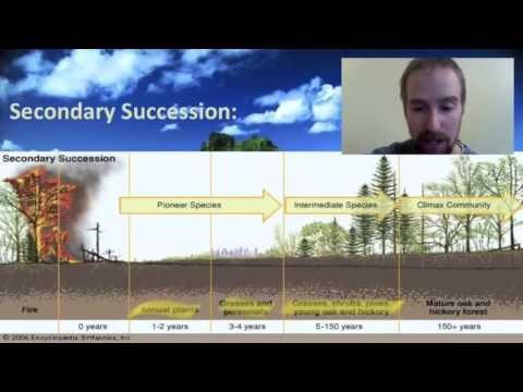 Biology 2 01 Ecological Succession