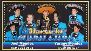 Download GUADALAJARA PITALITO , JOEL MENDEZ 310 324 7038 MP3 song and Music Video