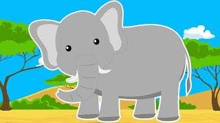 Дикие Животные Африки. Про Слона Мультик для Детей. Развивающий Мультфильм. Дикие Животные для Детей