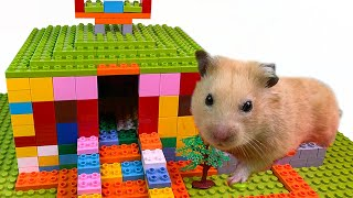 DIY - How To Build House For Hamster From Lego Duplo ( Satisfying )