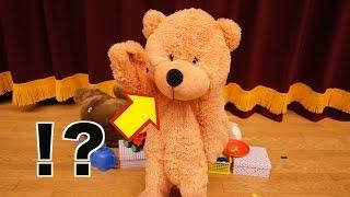【衝撃】生きているクマのぬいぐるみをご覧ください。(#122) thumbnail