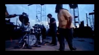 The Legend of Woodstock 1969