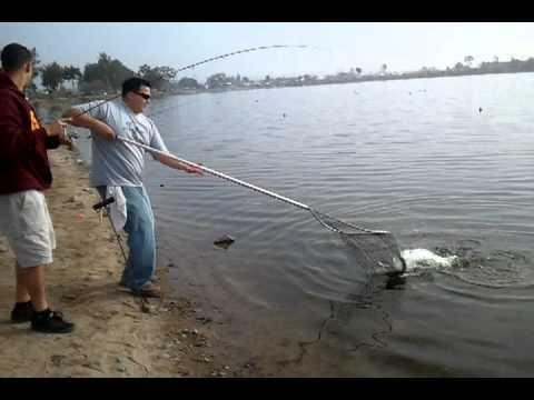 Santa ana river lake fishing with t rex 2 youtube for Lopez lake fishing report