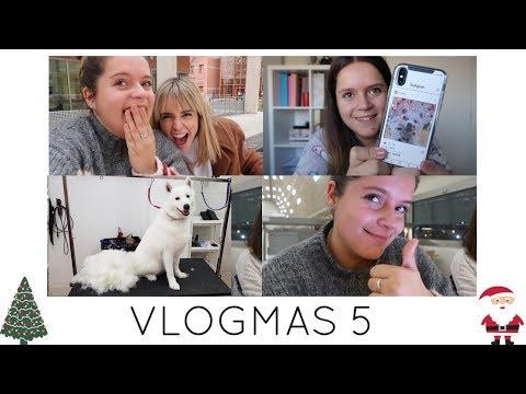 VLOGMAS DIA 5 | Deslanamos a Fluffy y la mejor funda del mundo | Yanes Vlogs